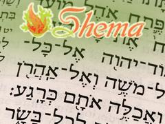 shema-about
